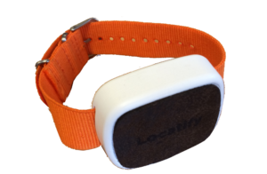 Locatify UWB Wristband