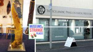 Museums In Strange Places: The Penis Museum