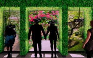 The Story of Gardening at the Newt (UWB indoor positioning by Locatify) - 8